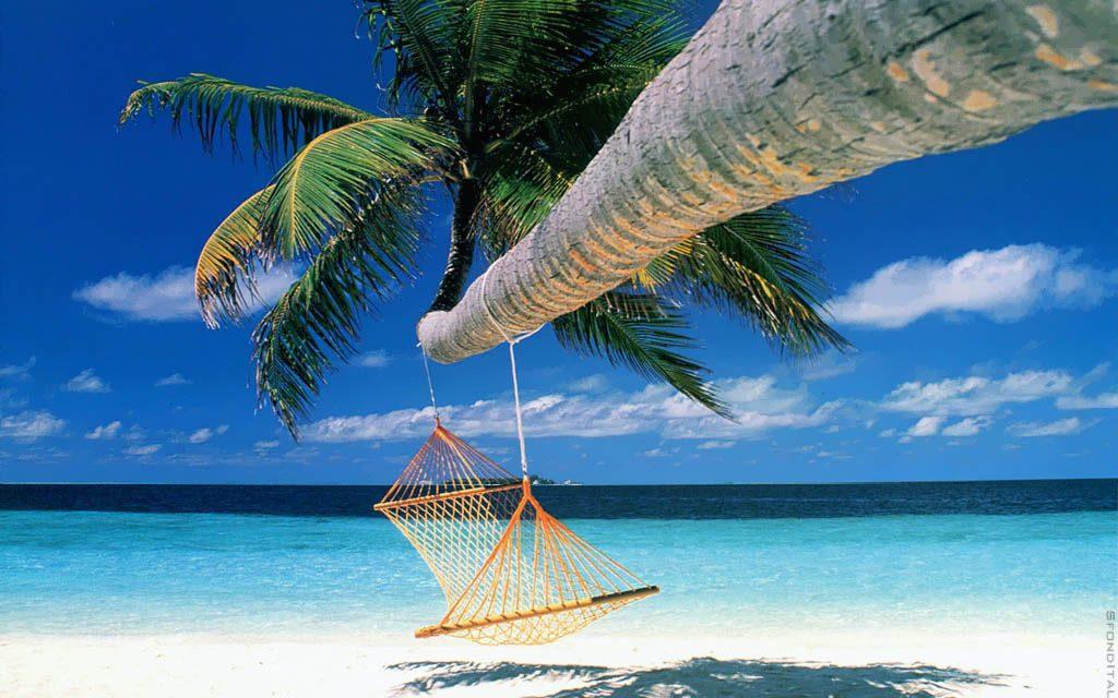 Bericht van het bestuur: fijne vakantie