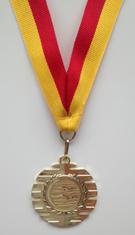 Veel regio-kampioenen bij de Regio Zomerkampioenschappen lange baan